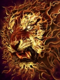 nokia n series mobile background Fire Lion